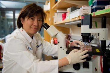 X inmunoterapiaX como sucede ahoraX detalle el perfil genético específico de su cáncerX nueva vacuna